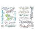 Libro Frases e Inscripciones